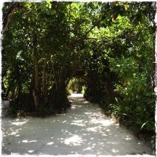 Macht man Urlaub auf den Malediven, braucht man nur Flip Flops oder gar keine Schuhe. Ich lief immer barfuß über die warmen Sandwege (Foto: balkanblogger)