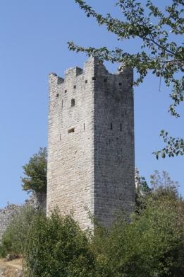 Nahezu surreal scheint es ein Naturkunstwerk zu sein, das immer mehr die Ruinen in Besitz nimmt (Foto: Balkanblogger)